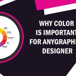 Why color is more important Feature-image