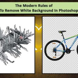 The-Modern-Rules-of-How-To-Remove-White-Background-In-Photoshop