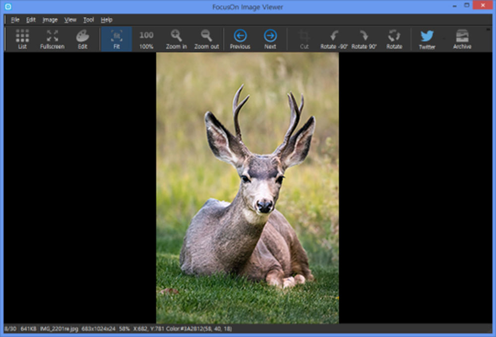 focus on-image-viewer-Best Photo Viewing Apps