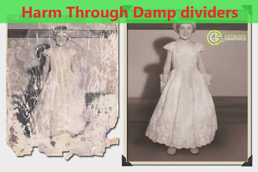 Harm-Through-Damp-dividers