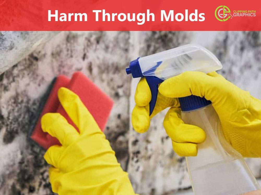 Harm-Through-Molds